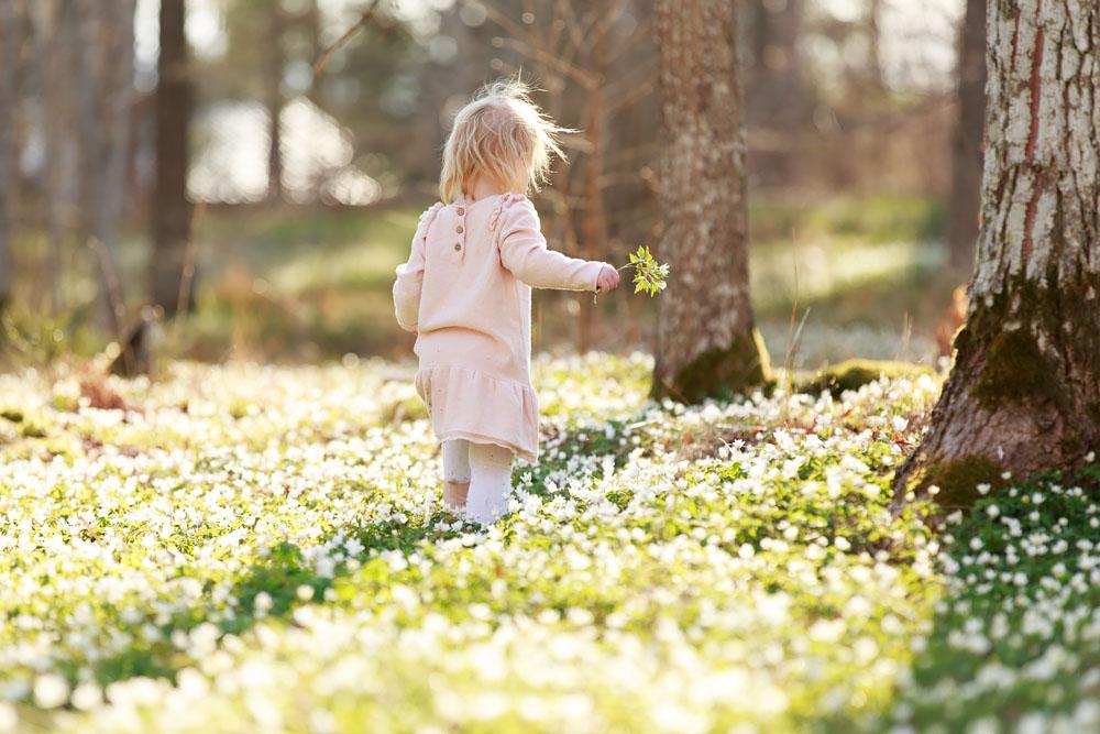 Vitsippefotografering - barnfotograf Phia Bergdahl, Västervik