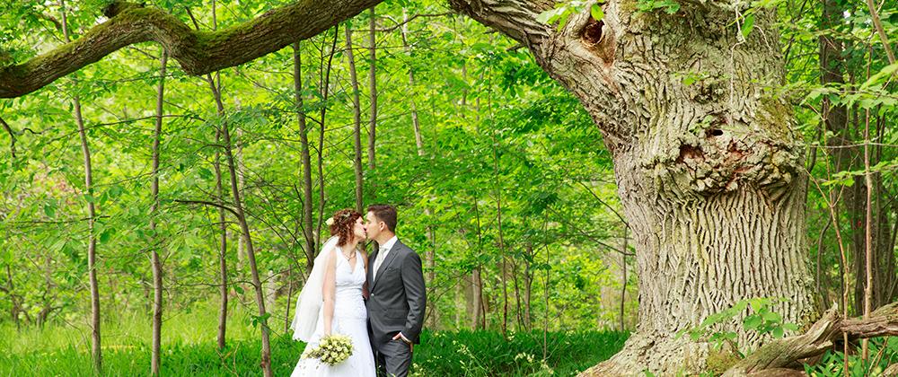 Brudpar som pussas under stora eken på Ekholmen, Gränsö fotograferad av bröllopsfotograf Phia Bergdahl Västervik